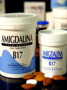 AmigdalinaB17T500-Medium.jpg